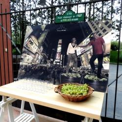 El pisado de la uva... en Times Square!