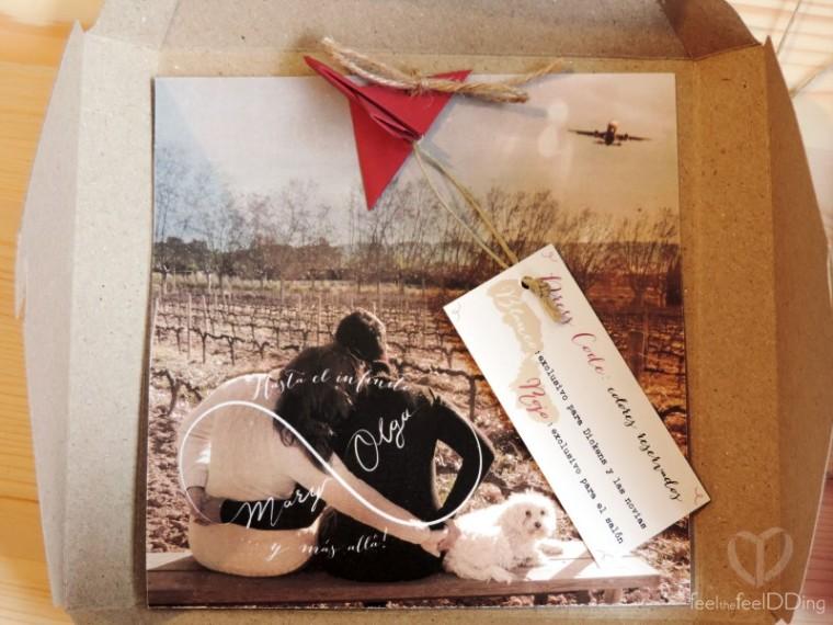 En el tinterior, foto de las novias observando las viñas (el vino es una de sus pasiones) en la Masía donde se iban a casar. Observando un avión pasar (otra de sus pasiones) y formando con su abrazo el logotipo de la boda... un infinito!