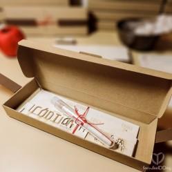 Y voila! Este paquetito bien recogito te esperaba al abrirla. ¡Dan ganas de desmontarlo y descubir las piezas!